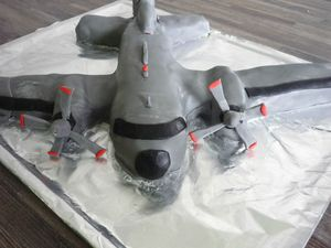 3D Торт Самолет – мастер-класс-шаг 4