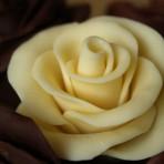 Роза из шоколада – видео-рецепт