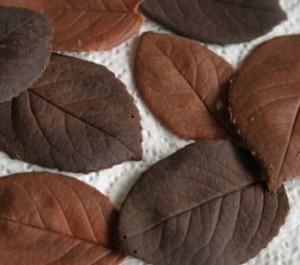 Украшения из шоколада – листочки. Мастер-класс