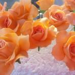 Как сделать розы из мастики – простое изготовление. Видео