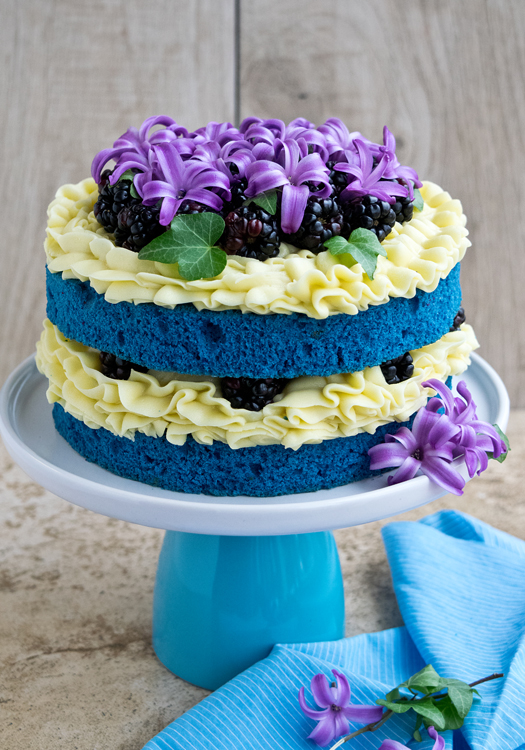 Бисквитный торт рецепт с фото в домашних условиях с белковым кремом