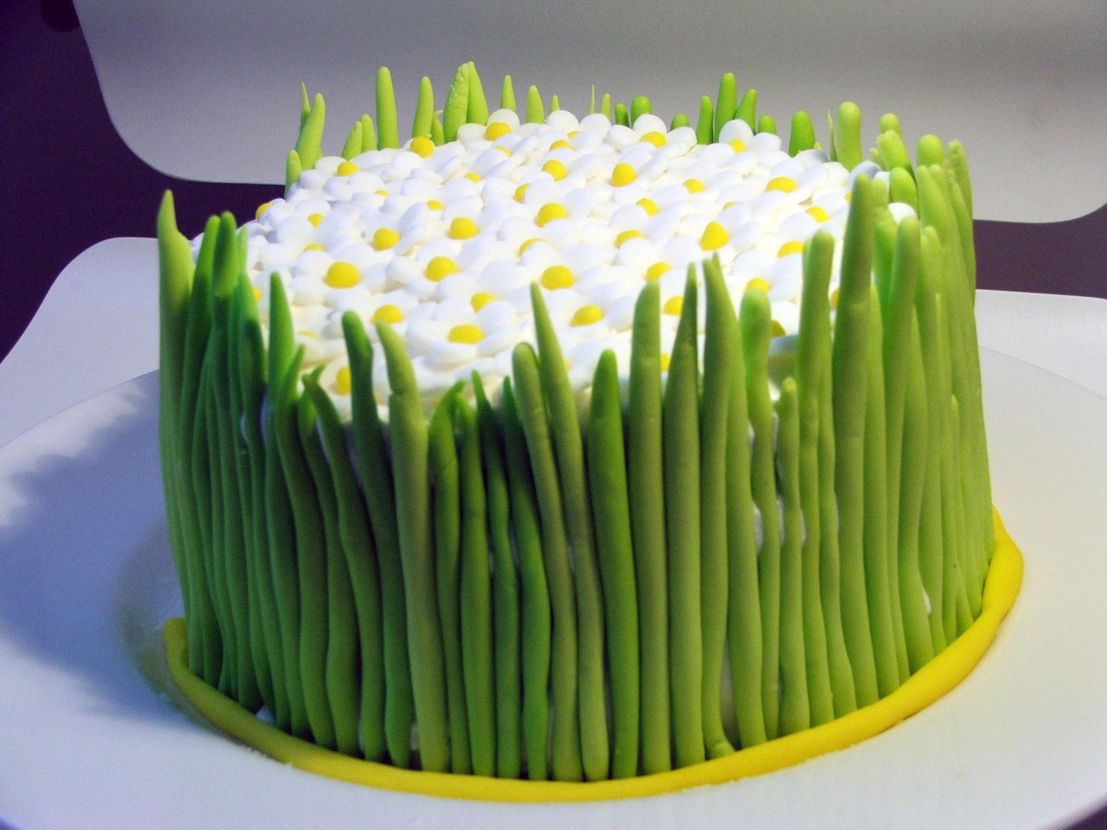 Как украсить торт мастикой: пошаговые инструкции, фото, видео и 78