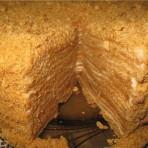 Медовый торт со сливочным кремом и медовой пропиткой