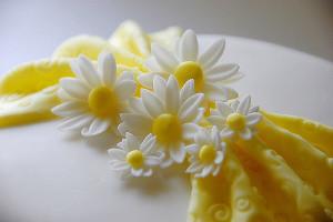 Цветы из мастики – ромашки. Видео-рецепт
