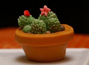Украшение торта – кактус из мастики. Видео-шаг 1