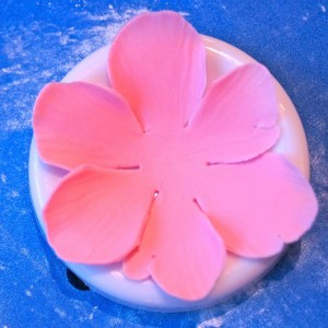 Цветы из мастики – мастер-класс. Делаем цветок анемона из мастики-шаг 5