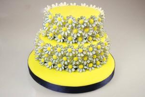 Летние идеи или как украсить торт в летних мотивах-шаг 1