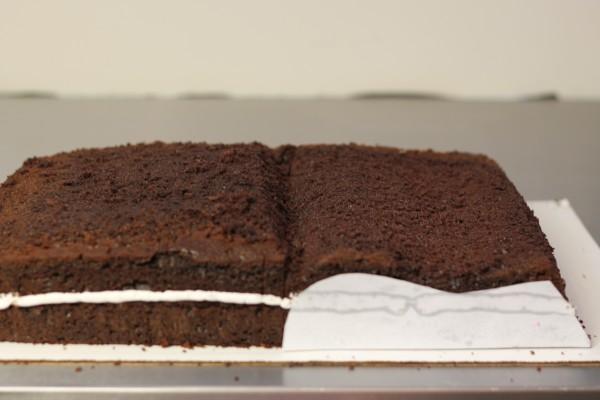 Как сделать торт книгу фото 164