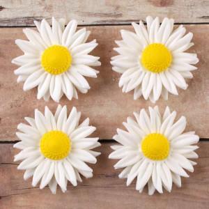 Цветы из мастики – ромашки. Видео-рецепт-шаг 2