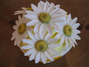 Цветы из мастики – ромашки. Видео-рецепт-шаг 1