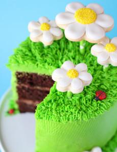 Торт Ромашковое поле. Как украсить домашний торт – мастер-класс-шаг 7